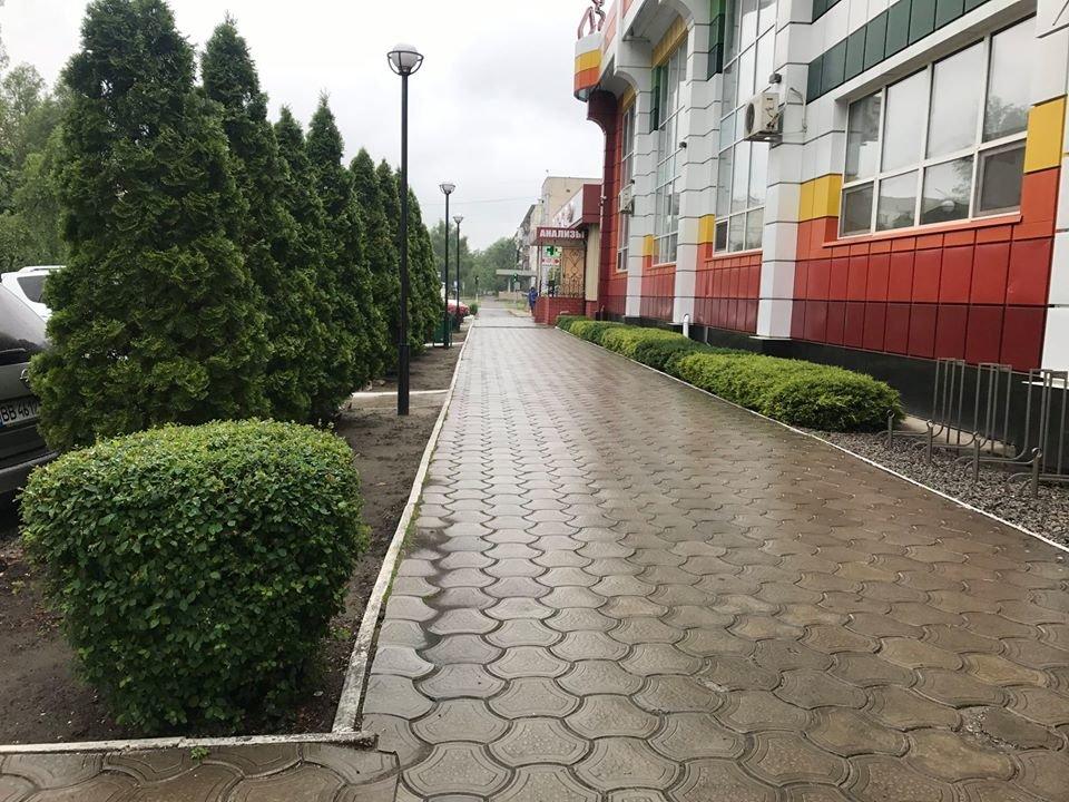 В Северодонецке приняли решение о проведении конкурса на лучшую благоустроенную территорию, фото-7