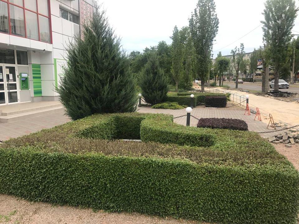 В Северодонецке приняли решение о проведении конкурса на лучшую благоустроенную территорию, фото-8