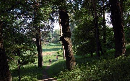Луганщине 82! Невероятные места региона, о которых вы могли не знать, фото-7
