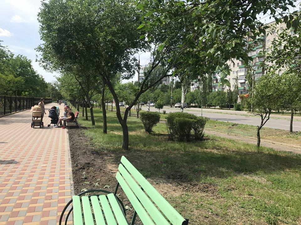 В Северодонецке установили новые лавочки, фото-5