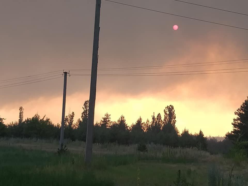 За Северодонецком горит лес, фото-7