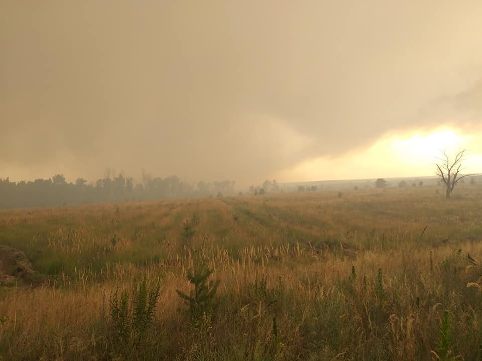 За Северодонецком горит лес, фото-6