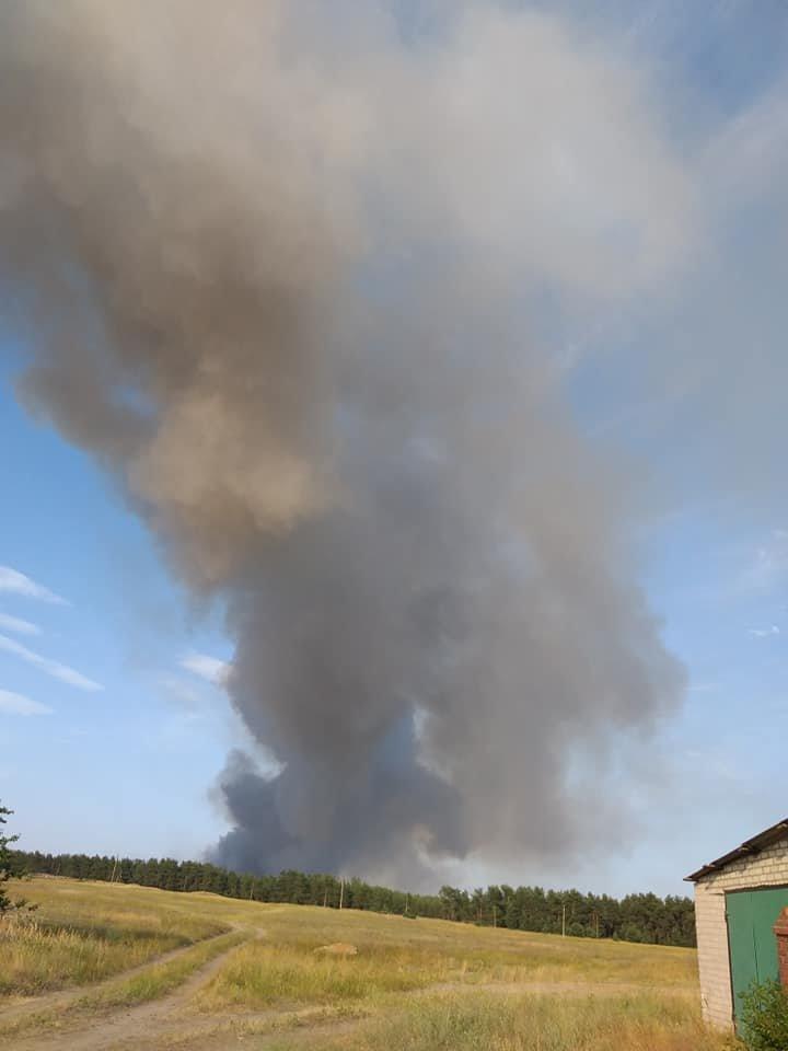 За Северодонецком горит лес, фото-2