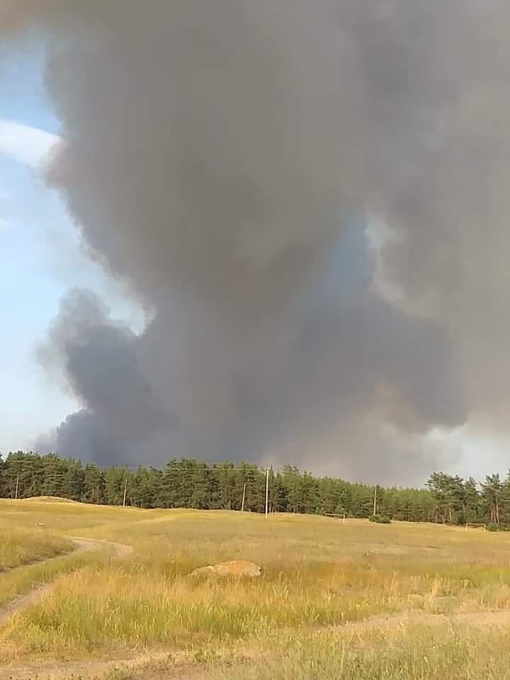 За Северодонецком горит лес, фото-1