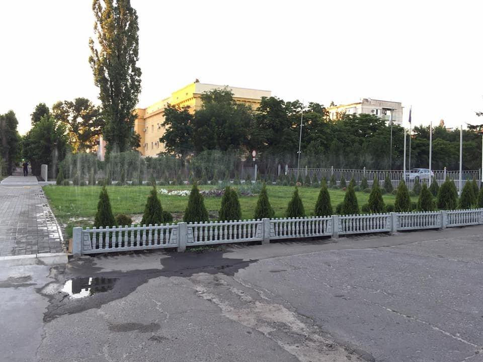 Северодонецкие пожарные создали в городе новую зеленую зону, фото-4