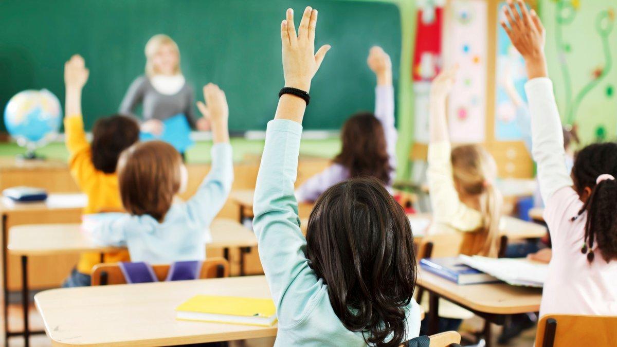 Отдельные входы, уроки в разное время, график в столовой: что ждет школы Луганщины, фото-2