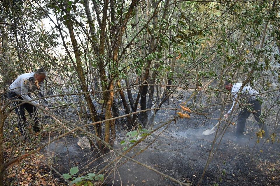 На Луганщине снова пожароопасная ситуация (фото) , фото-7