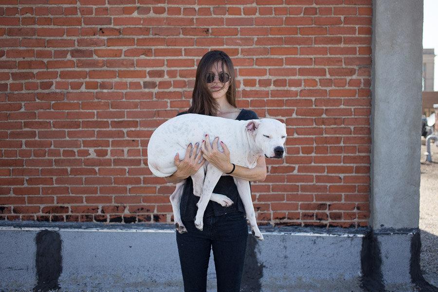 Жизнь недомашних животных Северодонецка: простые способы помочь бездомным собакам и кошкам пережить осень, фото-4