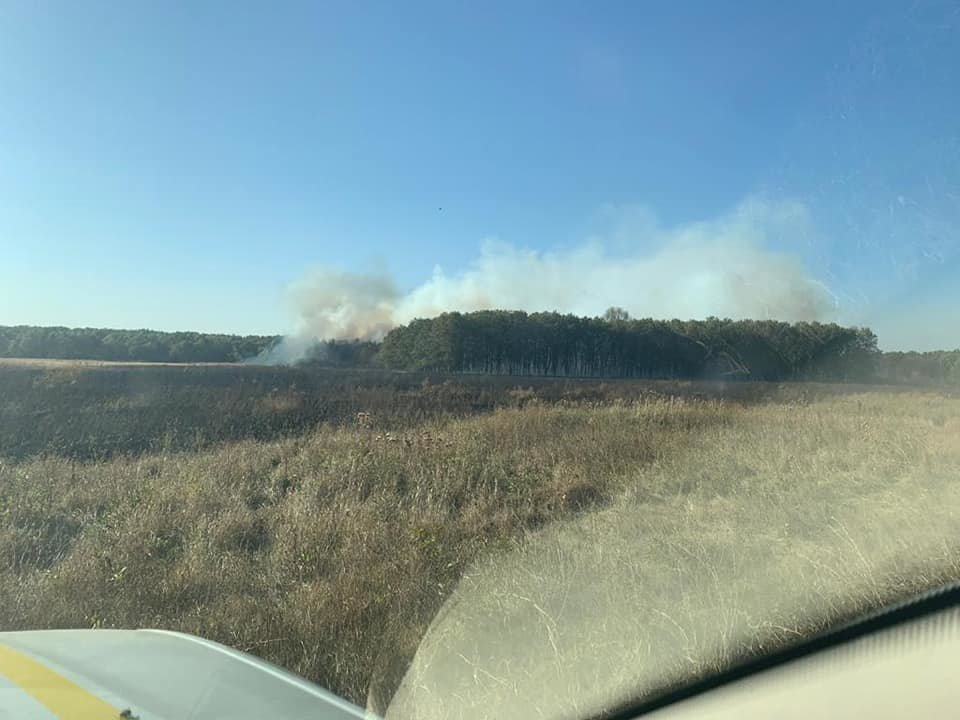 Пожары продолжаются: на Луганщине фиксируют новые очаги возгорания, фото-2