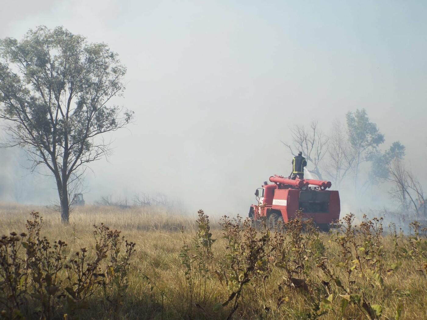 Пожары продолжаются: на Луганщине фиксируют новые очаги возгорания, фото-1