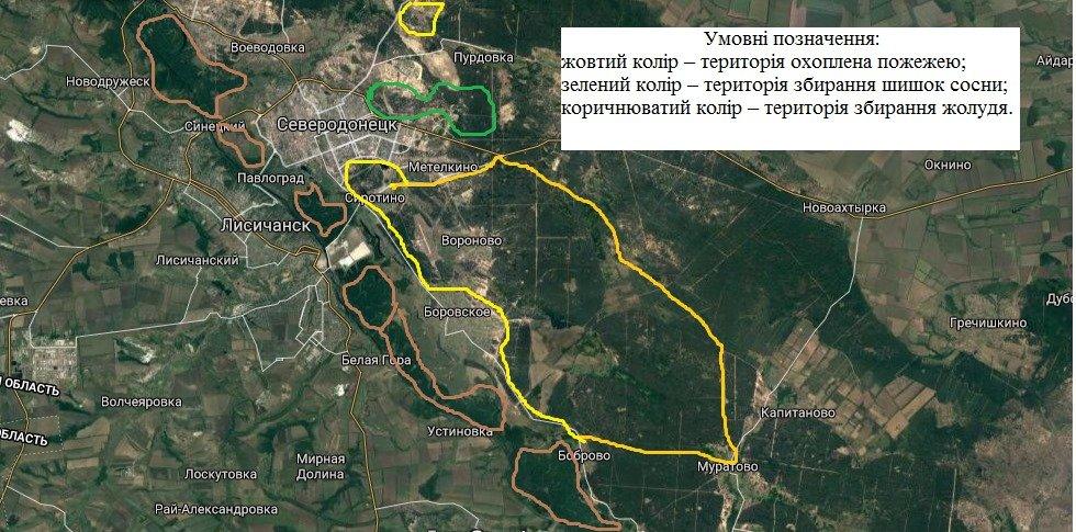 В Луганской области полностью ликвидировали массовые пожары, фото-2