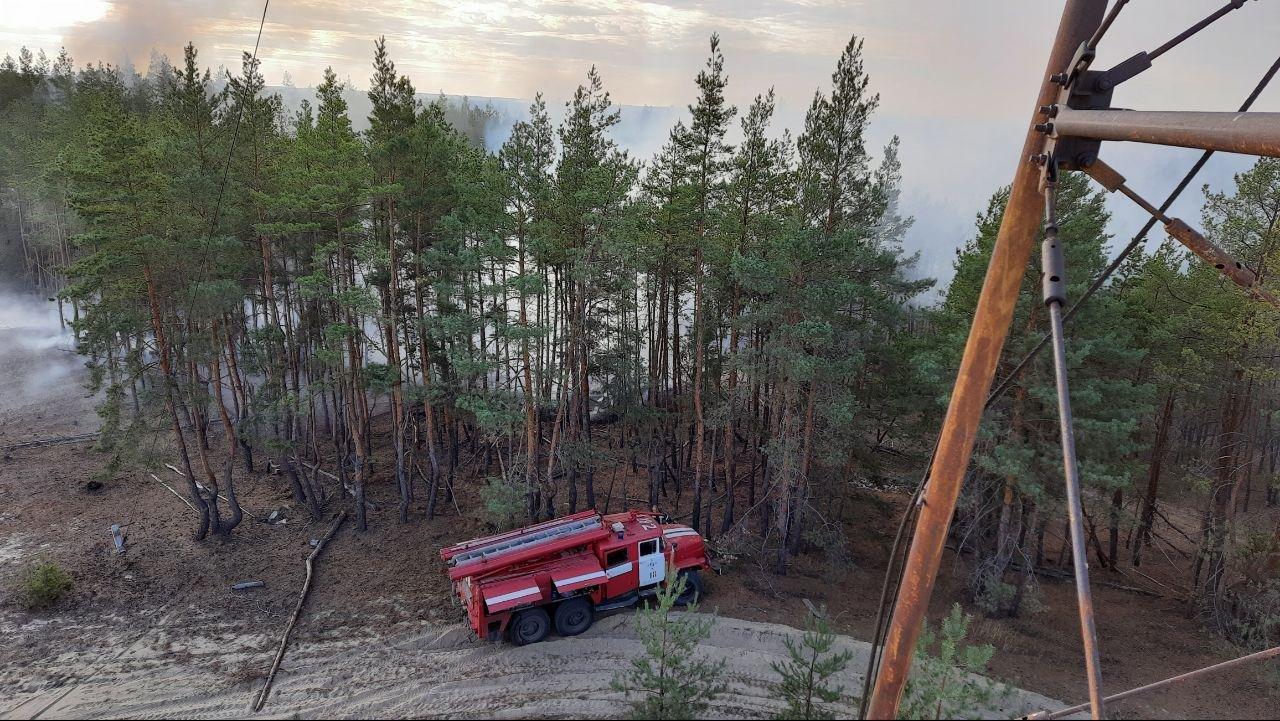В Луганской области полностью ликвидировали массовые пожары, фото-1