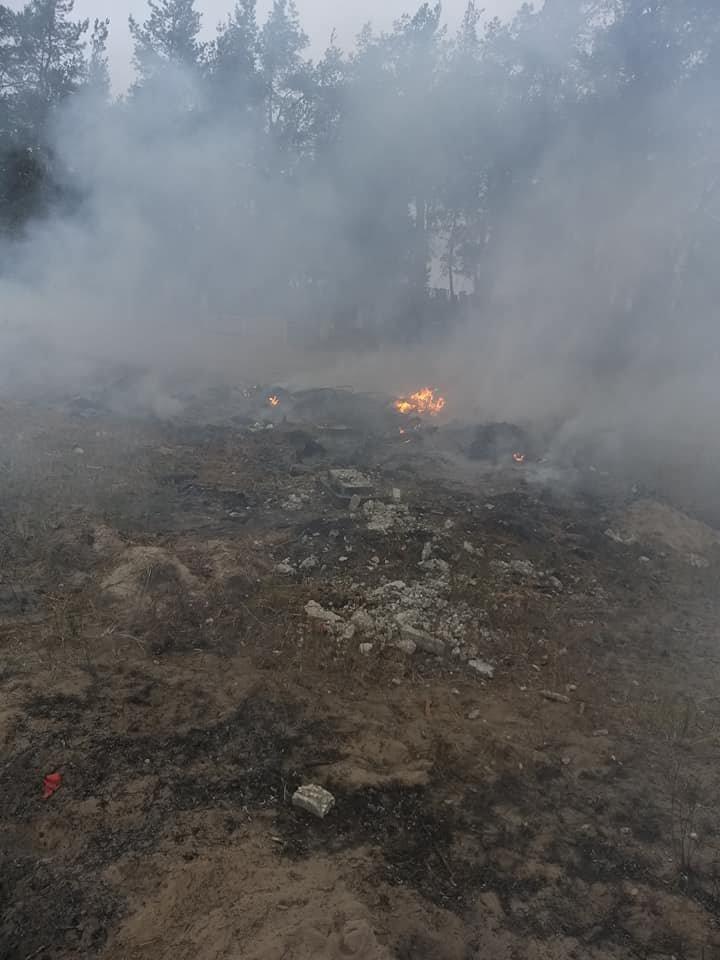 Под Северодонецком новый пожар. Горело на окраине Боровского (фото), фото-3