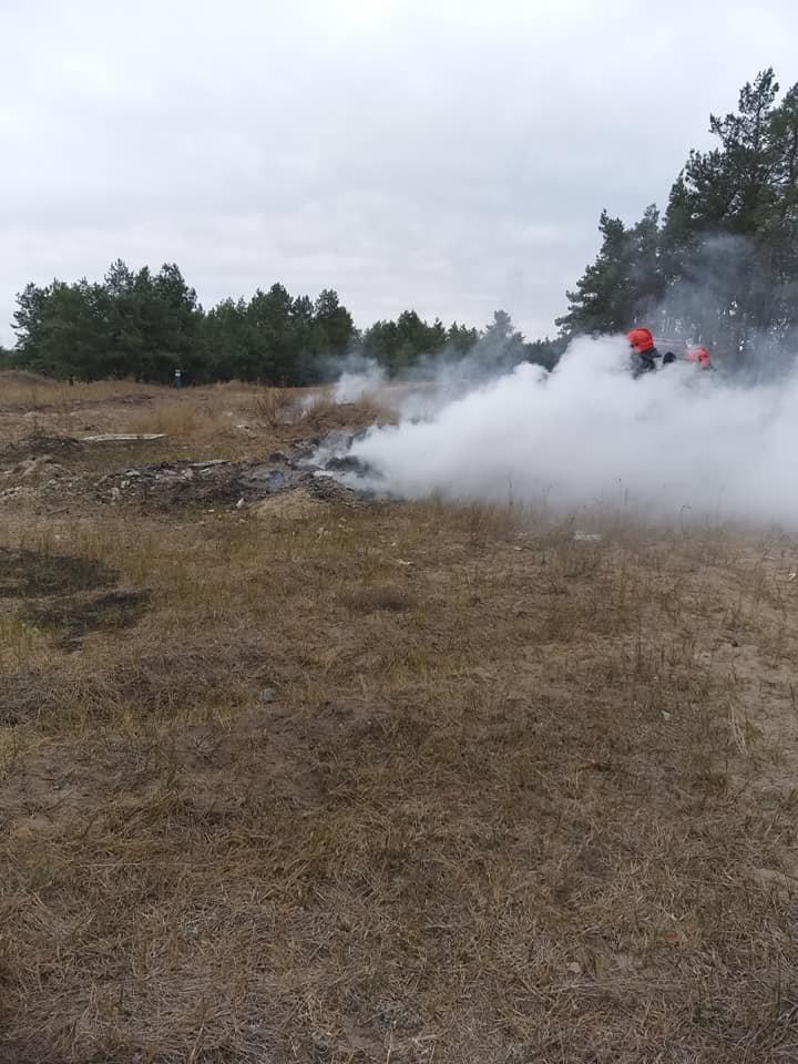 Под Северодонецком новый пожар. Горело на окраине Боровского (фото), фото-4