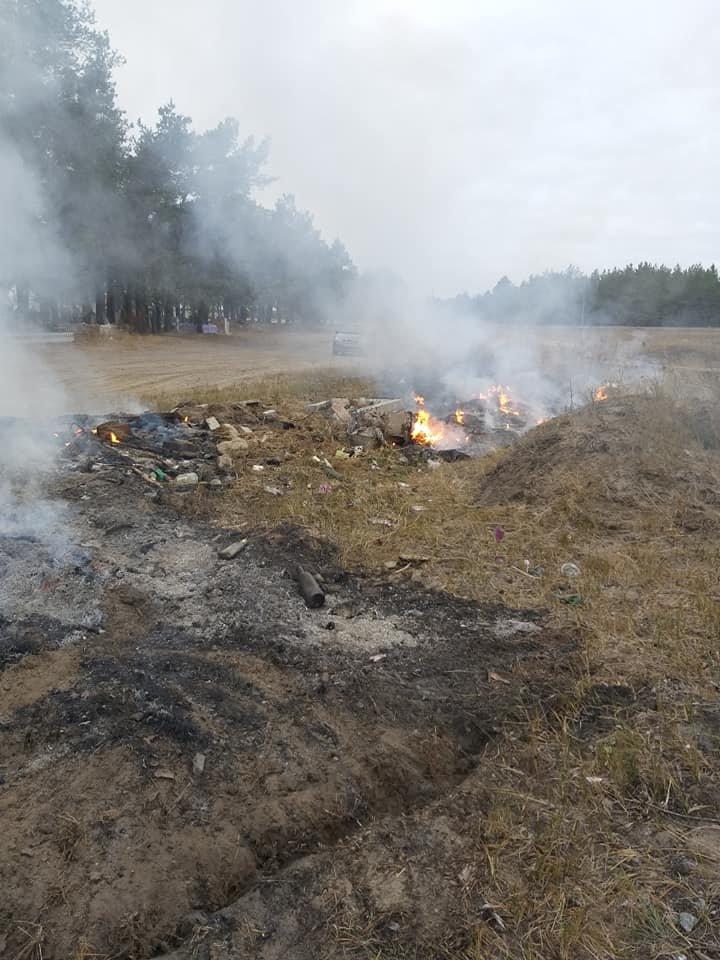 Под Северодонецком новый пожар. Горело на окраине Боровского (фото), фото-5