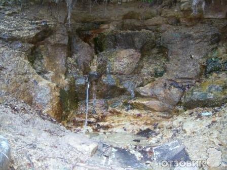 Родники Луганщины: 13 мест, где можно набрать чистой воды, фото-4