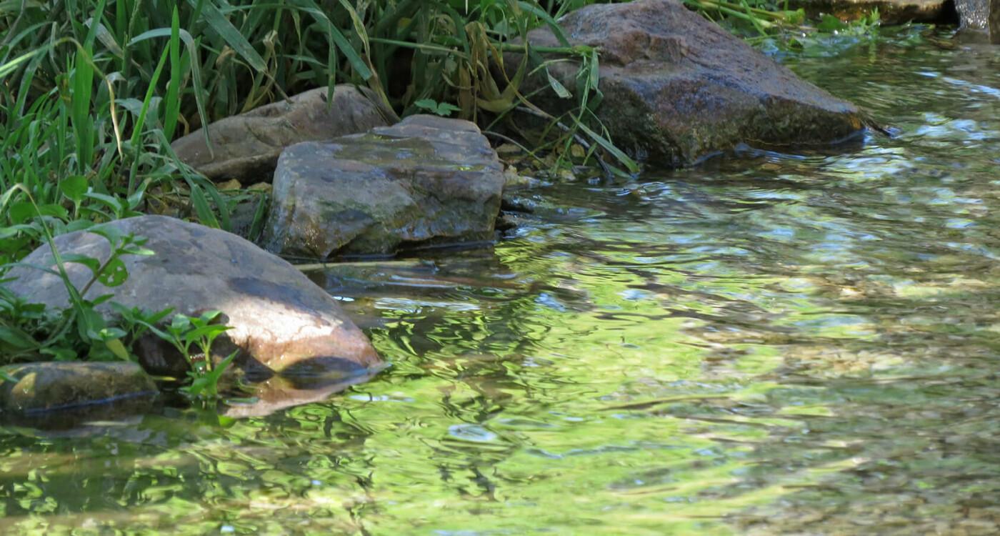 Родники Луганщины: 13 мест, где можно набрать чистой воды, фото-8