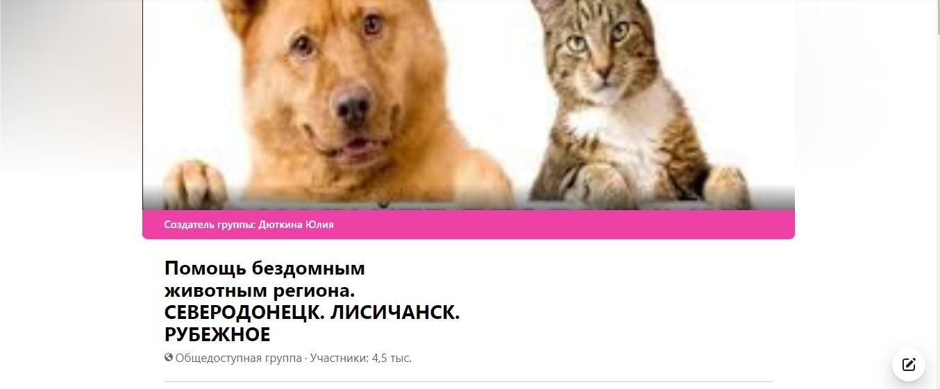 Добрый Северодонецк: социальные службы и общественные организации где можно получить помощь, фото-6