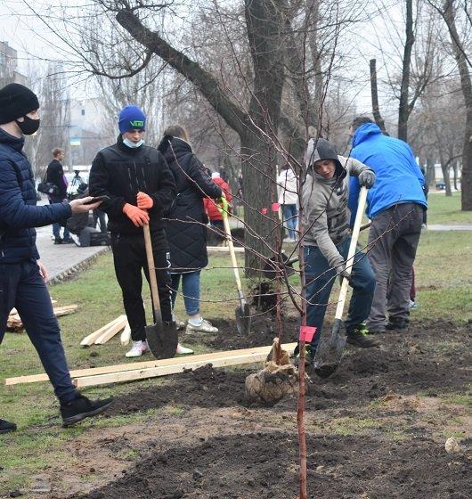 """В Северодонецке высадили """"семейные"""" деревья (фото) , фото-1"""