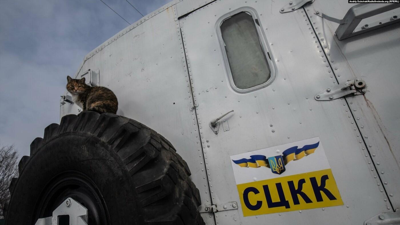 Преданные спутники: военным на Донбассе помогают четвероногие друзья (фото), фото-5