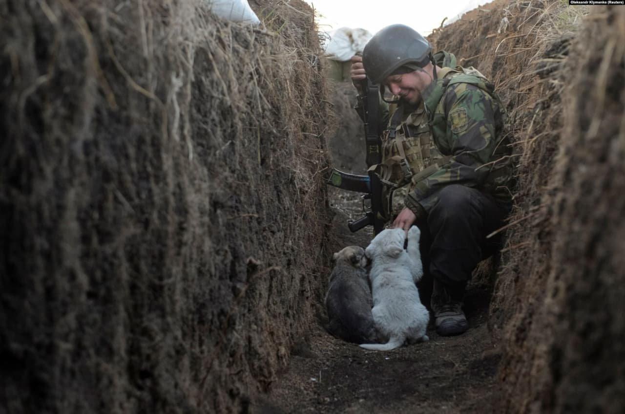 Украинский военнослужащий Владимир играет со щенками на линии разграничения в Донецкой области, Украина, 10 апреля 2021 года