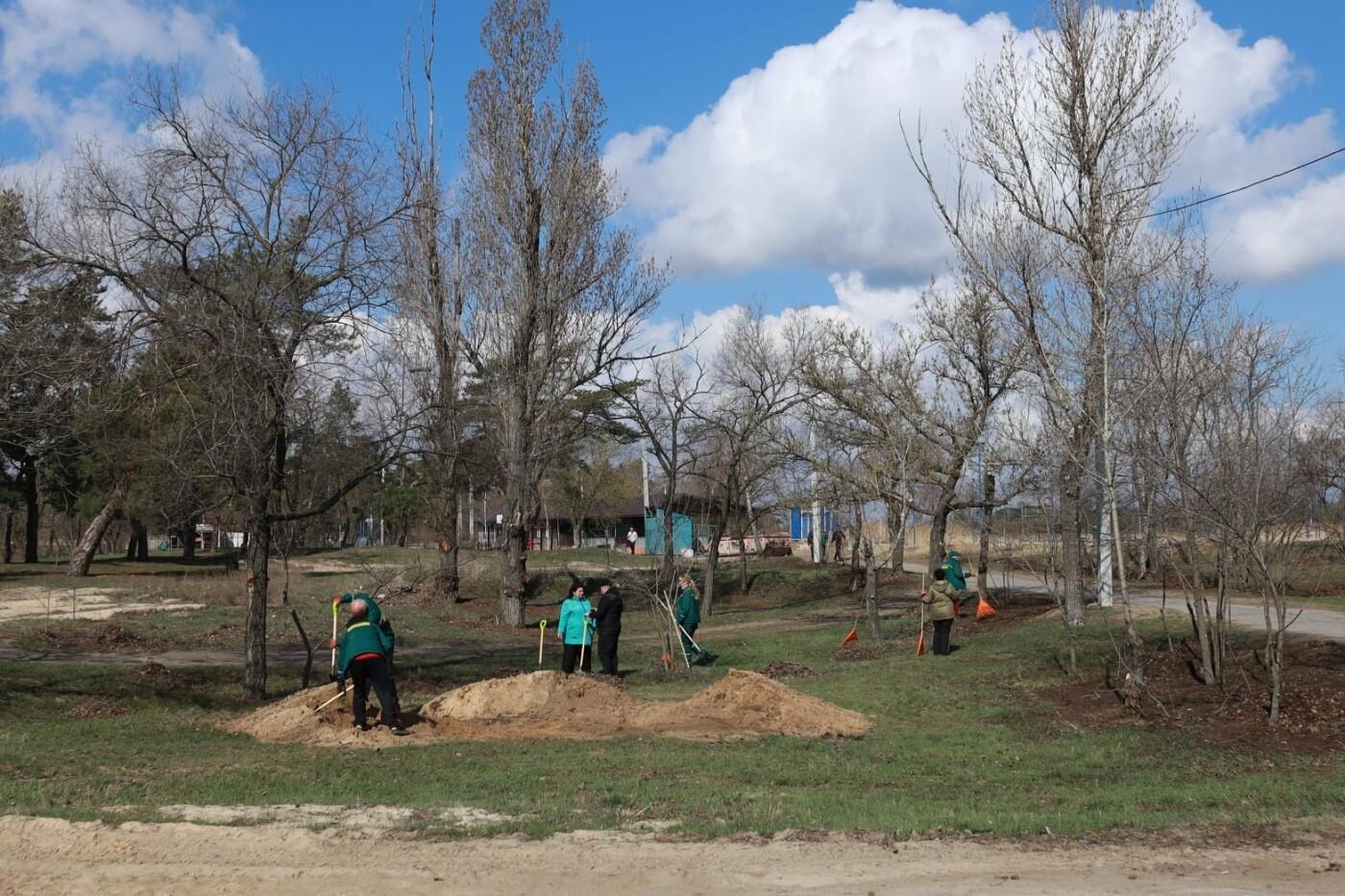 Северодончане приняли участие во всеукраинской акции «За чистую окружающую среду» (фото) , фото-19