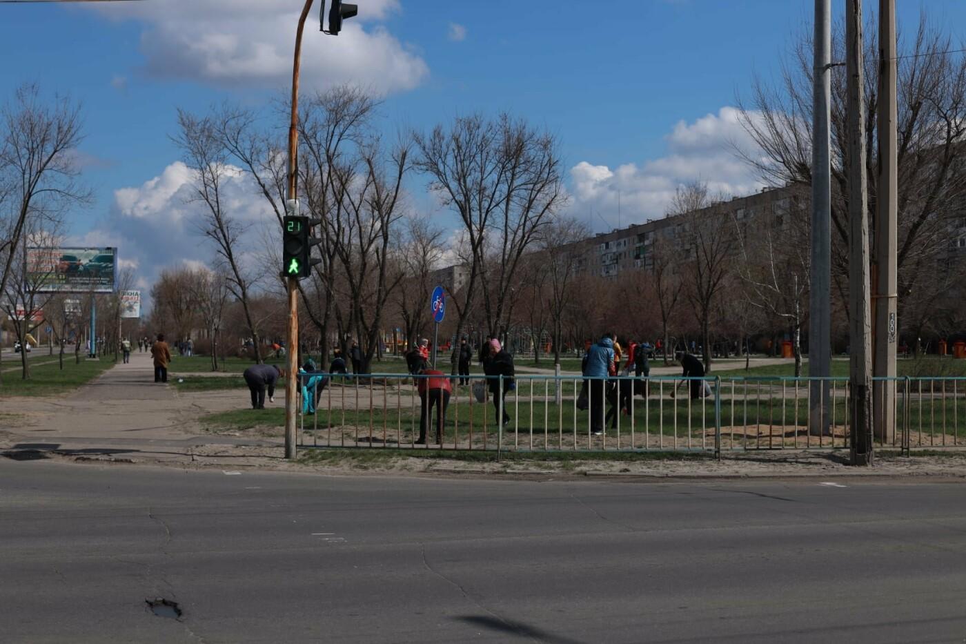 Северодончане приняли участие во всеукраинской акции «За чистую окружающую среду» (фото) , фото-8