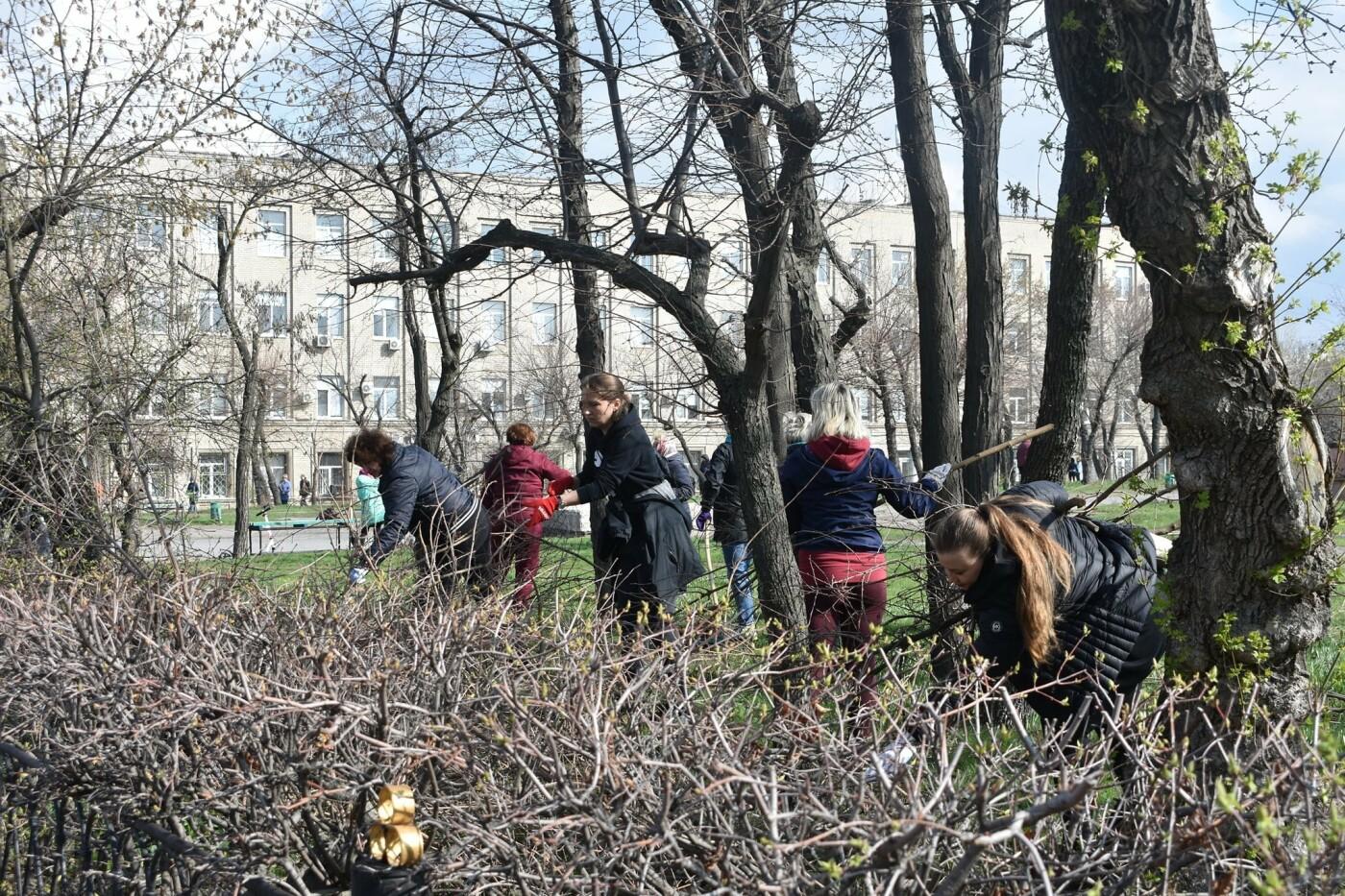 Северодончане приняли участие во всеукраинской акции «За чистую окружающую среду» (фото) , фото-23