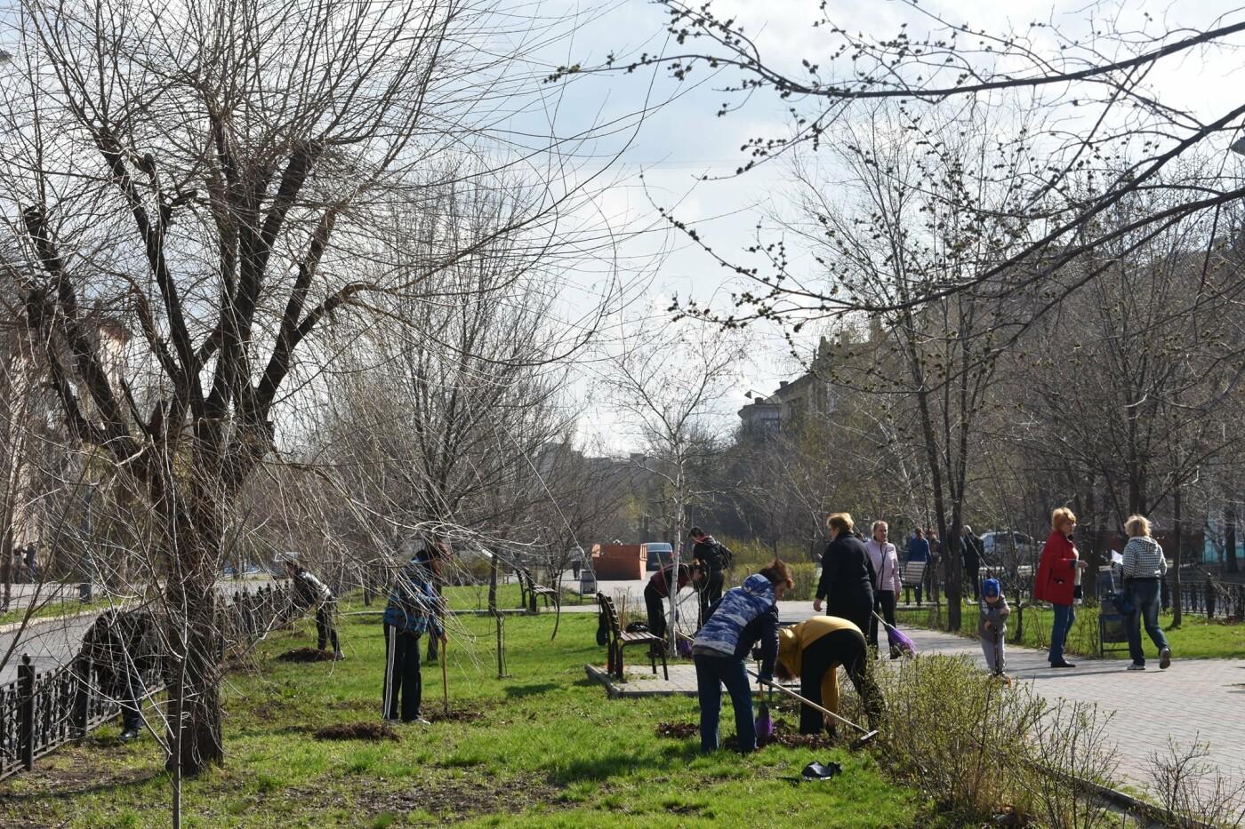 Северодончане приняли участие во всеукраинской акции «За чистую окружающую среду» (фото) , фото-2