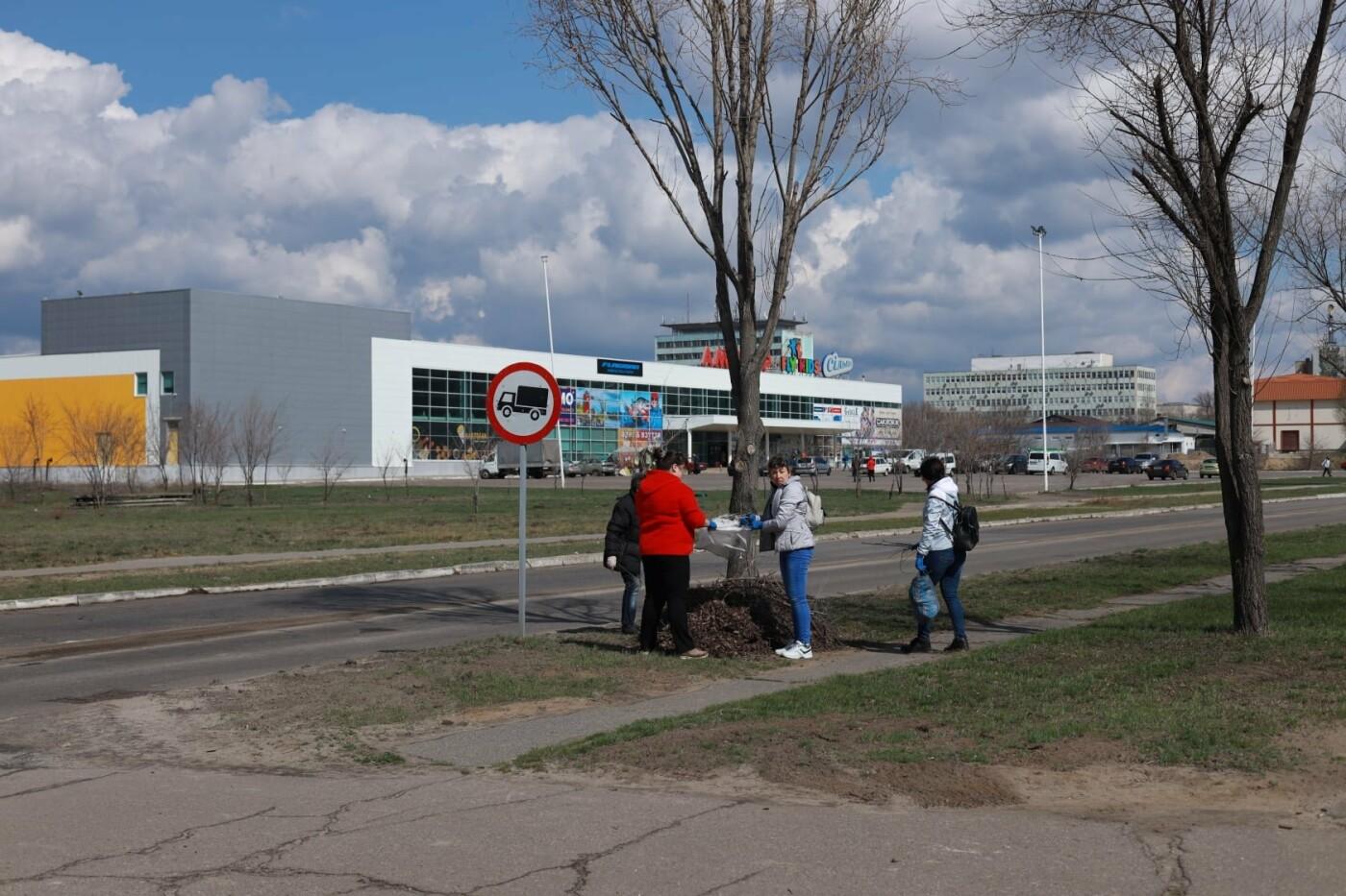 Северодончане приняли участие во всеукраинской акции «За чистую окружающую среду» (фото) , фото-6