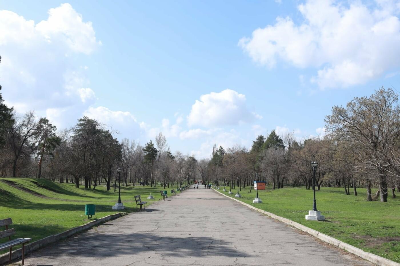 Северодончане приняли участие во всеукраинской акции «За чистую окружающую среду» (фото) , фото-17