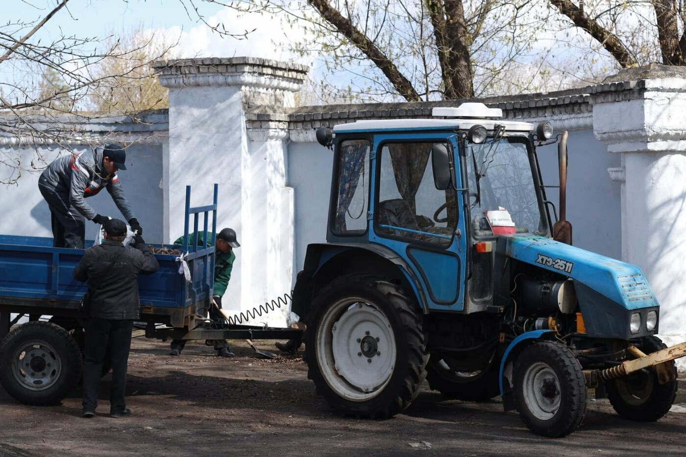 Северодончане приняли участие во всеукраинской акции «За чистую окружающую среду» (фото) , фото-13