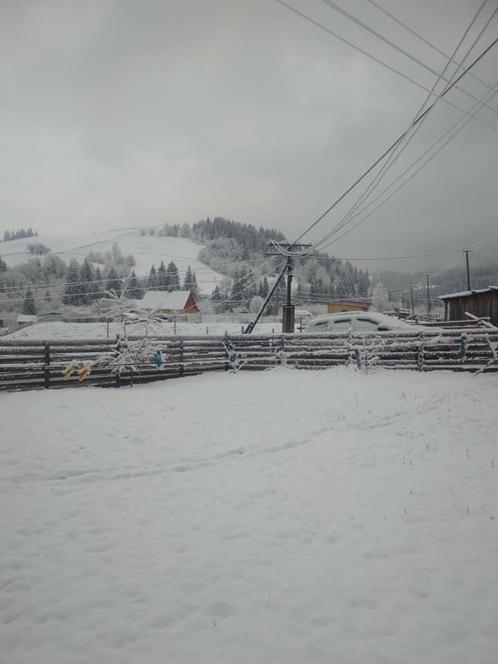 В Украине выпал снег: какая погода ждёт жителей Луганской области, фото-3, Валерій Полянчук