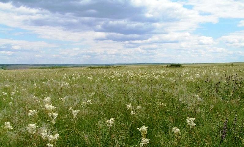 С Днём рождения, Луганщина! Невероятные места региона, от которых захватывает дух, фото-10