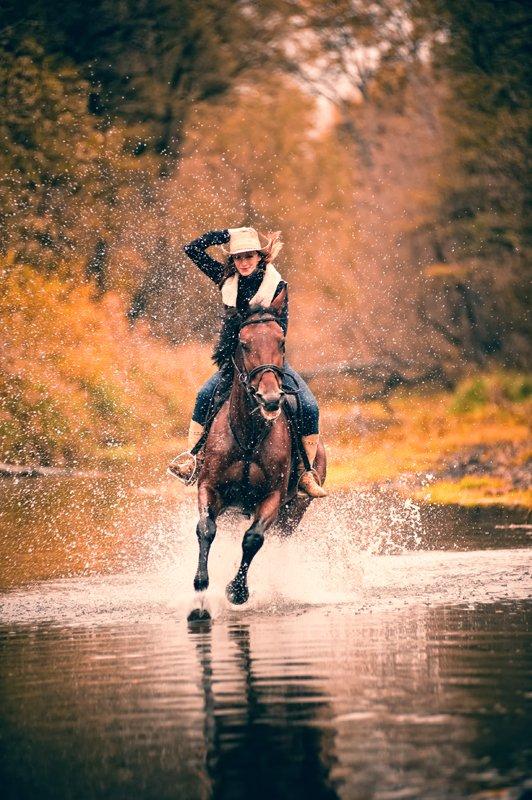 Верхом на коне: где северодончане могут покататься на лошадях, фото-2