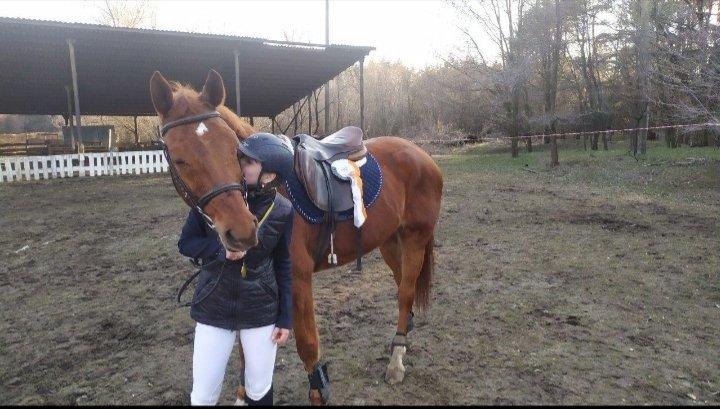 Верхом на коне: где северодончане могут покататься на лошадях, фото-5