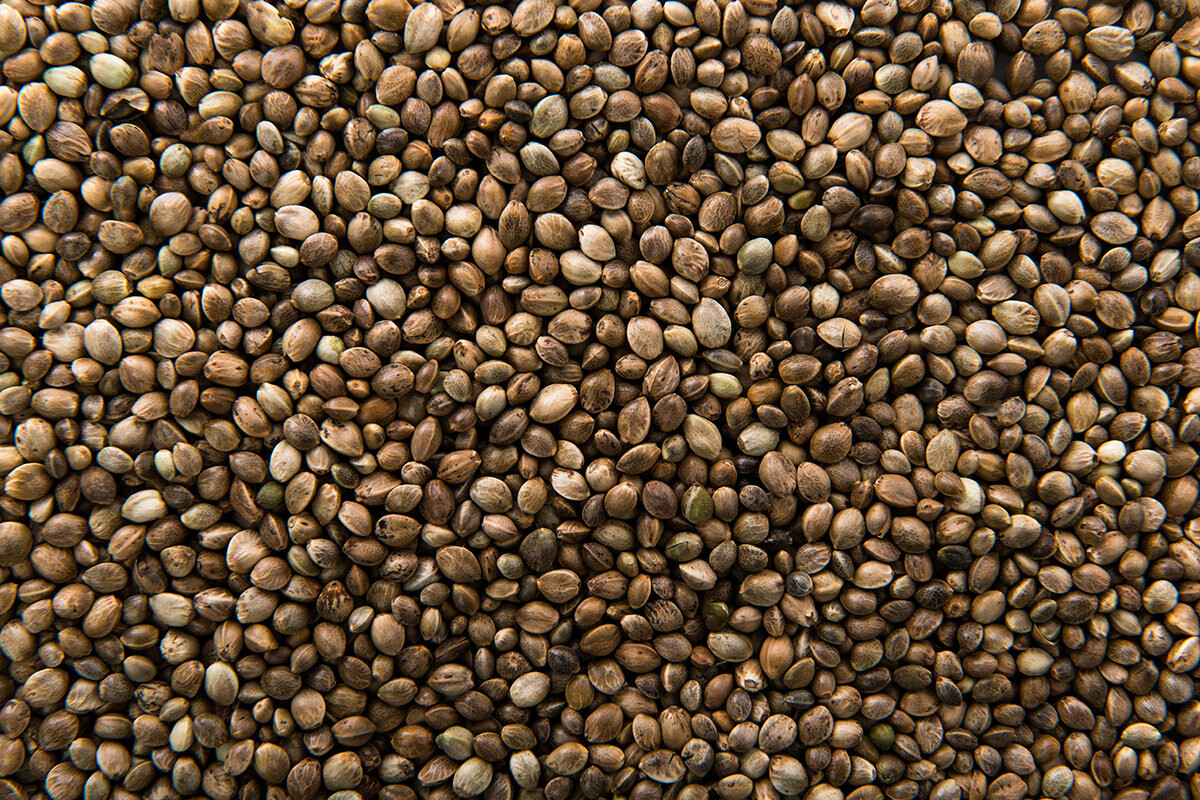 Seed семена марихуаны конопля трава курить